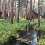 Cabins have a beautiful, tranquil setting