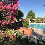 Borgo Tre Rose Bild