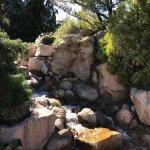 Denver Botanic Gardens Foto