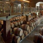 ViñaMar Wine Cellar