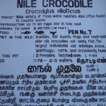 Madras Crocodile Bank