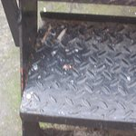 good news 3 = somebody seems to have repaired the broken step on the fire escape!