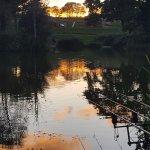 a evening around the lake