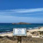 Ilha do pessequeiro
