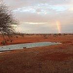 Photo of Ngutuni Safari Lodge