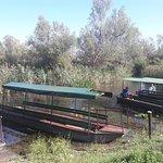 Фотография Nature Park Hutovo Blato
