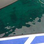 Foto de In Sea Speedboat
