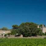 Chateau La Borie