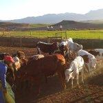 Skeiding Guest Farm Foto