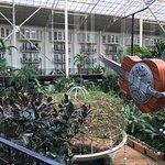 Gaylord Opryland Resort Gardens