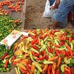 Chiles at Hartwood