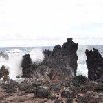 Foto Native Guide Hawaii