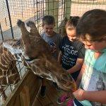 Jr. Zookeeper Program