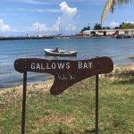 Renaissance St. Croix Carambola Beach Resort & Spa Bild