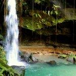 Lush, tropical beauty!