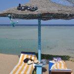 Photo of Blue Reef Red Sea Resort