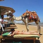 Photo de The Three Corners Sunny Beach Resort