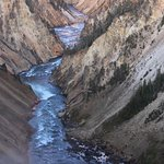 Yellowstone River from Lower Falls Overlook