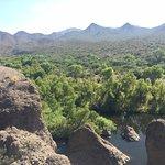 Foto de Sheraton Desert Oasis
