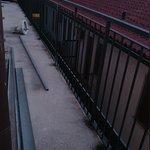 Photo de Park Hotel Italia