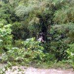Cruce del río Buritaca en una tarabita.