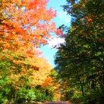 Foto de Minnesota's North Shore Scenic Drive
