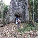 Wasai Tambopata Lodge Foto