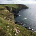 Foto de Old Head of Kinsale
