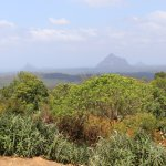beautiful views over the Glasshouse Mountains