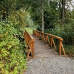 Pedestrian bridge over Olson Creek, great perch for salmon watching.