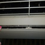 Black mold in AC unit where the filter slit is. DISGUSTING