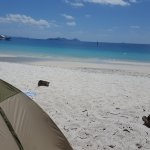 Photo of Whitehaven Beach