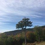 Kancamagus Highway의 사진