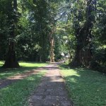 Photo of Archaeological Park and Ruins of Quirigua