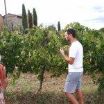 Following wine roads, among the vineyards