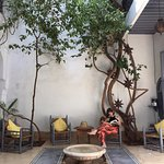 Courtyard with comfy chairs and lovely smelling orange trees