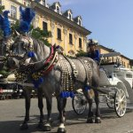 One of the many horse drawn carriages