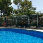 Jacuzzi Heated pool