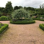 The walled garden - just like in The Secret Garden