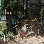 Photo of Cocoville Phuket