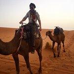 Camel back through the Sahara