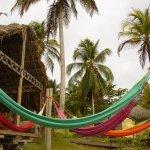 Foto de Isla Fuerte Ecolodge & Diving center