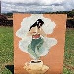 Kauai Coffee Company Foto
