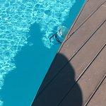 Vidamar Resort Algarve Foto