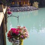Cilantro On The Lake