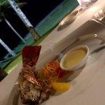 """Yasawa Island"" Lobster"
