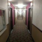 Hotel Rose - A Staypineapple Hotel Foto