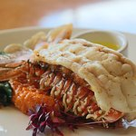 South African Lobster