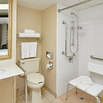 Holiday Inn Chicago-Carol Stream Foto