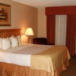 Photo of Holiday Inn Perrysburg - French Quarter